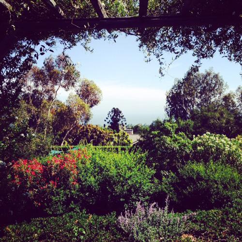 san-ysidro-ranch-upper-lawn