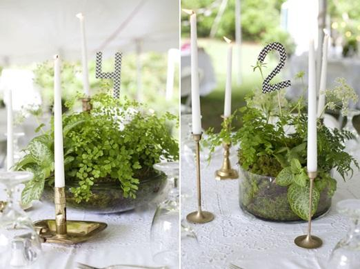 Wedding Table Decorations Potted Plants Woman Getting