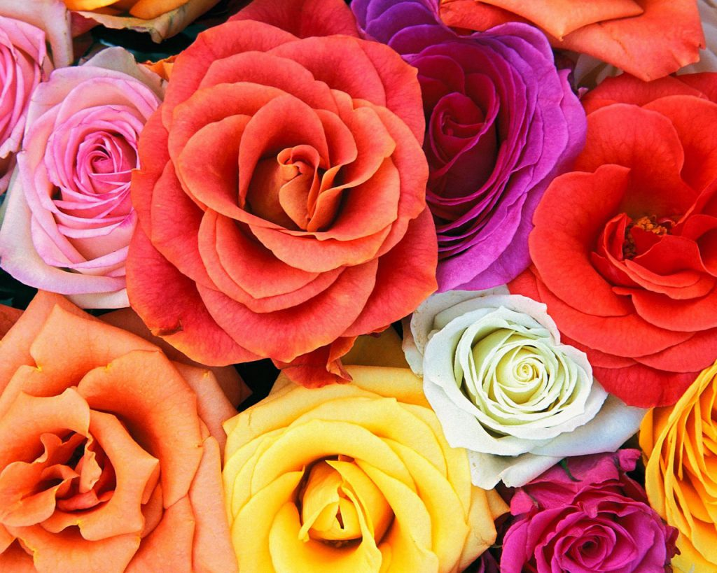 wedding-flowers-cost