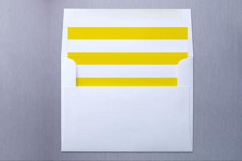best envelope liners