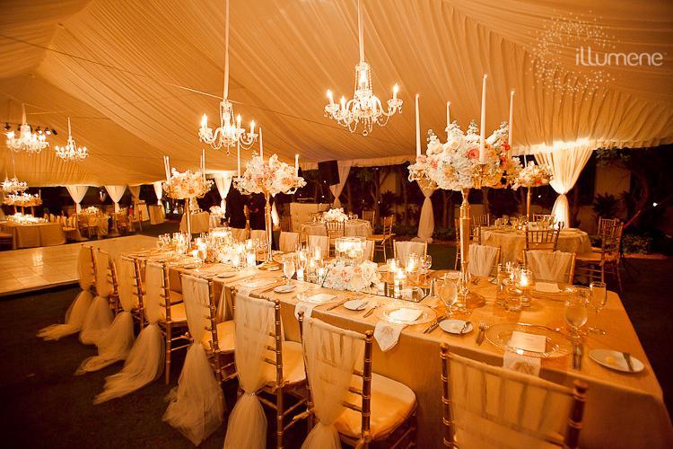 wedding tent cost