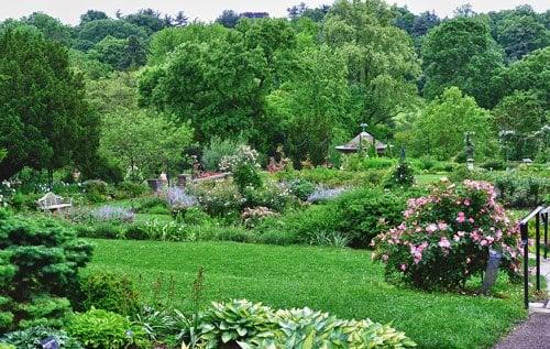 Morris Arboretum Wedding Venue