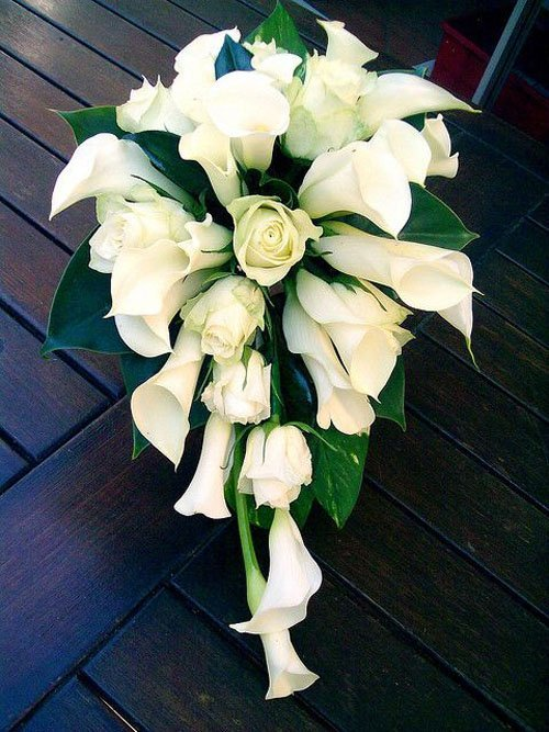 Wedding Flowers Lilies : Wedding flowers calla lily woman getting married