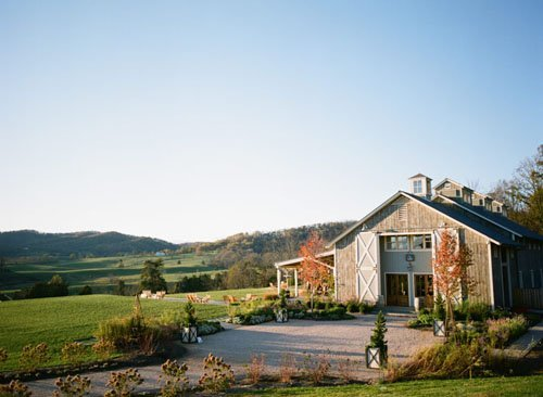North Garden, VA: Pippin Hill Farm and Vineyards