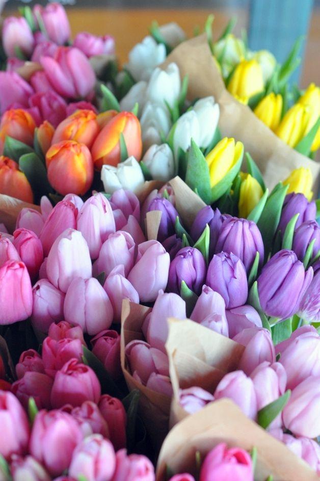 The best spring flowers for weddings spring flowers mightylinksfo