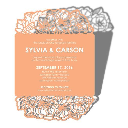 15 wedding paper divas wedding invitations we love online wedding invitations wedding paper divas 18 junglespirit Gallery