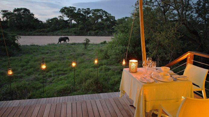 african safari honeymoon