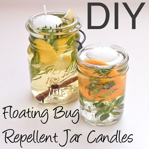 mason jars at your wedding diy citrus bug repellant
