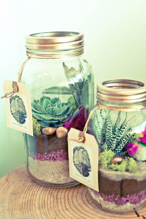 Mini Terranium Centerpiece or Favor
