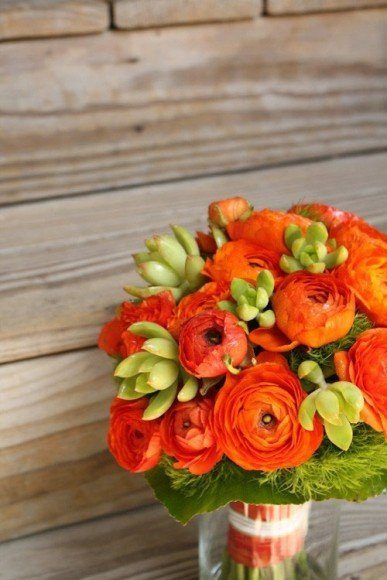 Deep orange Ranunculus paired with succulents.