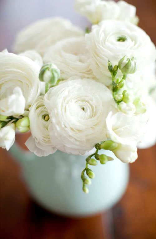 Our Favorite Ranunculus