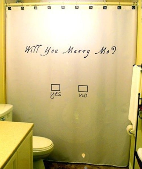 Shower Curtain Proposal