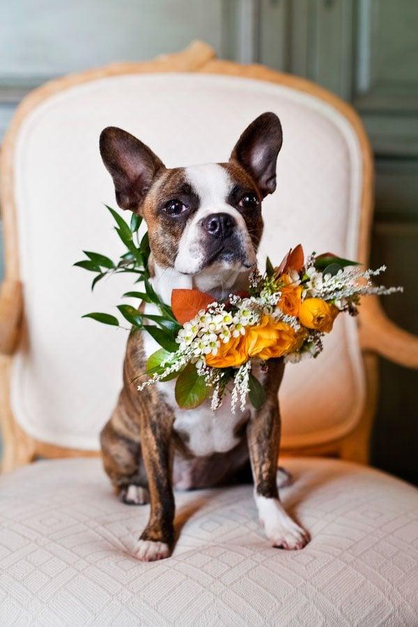 rustic-wedding-inspiration-shoot-tana-photography-9