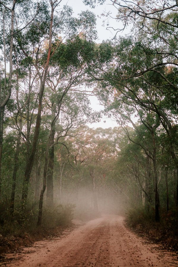 australia-real-wedding-woods-019