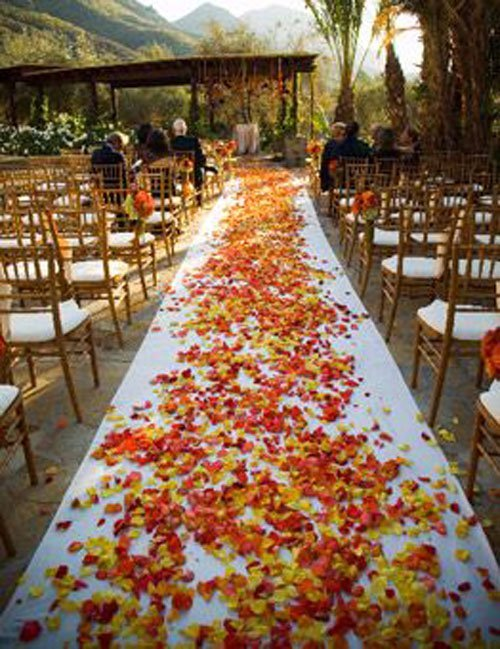 25 of the best fall wedding ideas ceremony aisle junglespirit Gallery