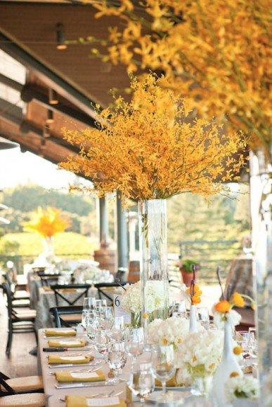 Take advantage of seasonal colors with foliage that makes a statement. Photo  by  Carlie Statsky via