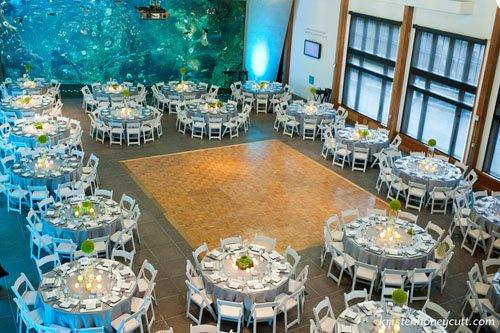 seattle-aquarium-wedding-venue-005