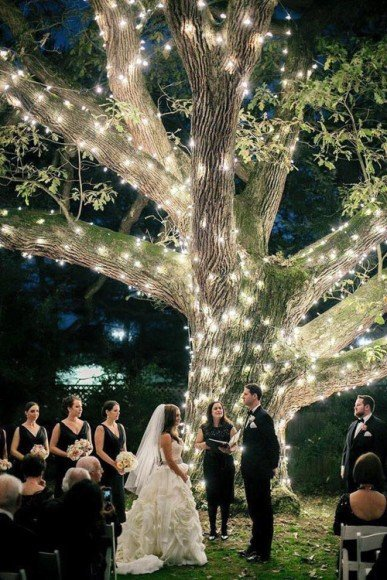 What a beautiful setup for an outdoor wedding ceremony! Photo by Emily Wren.