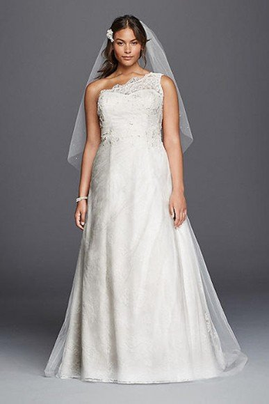 David's Bridal Collection One Shoulder Tulle A-line Plus Size Wedding Dress, Style 9WG3790. In Store & Online. $749.00 $699.00. Buy it Here