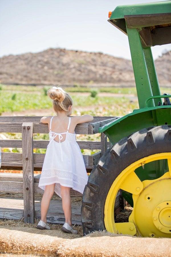 farm wedding inspiration