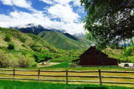 quiet meadow farm wedding
