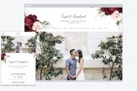 the knot wedding website
