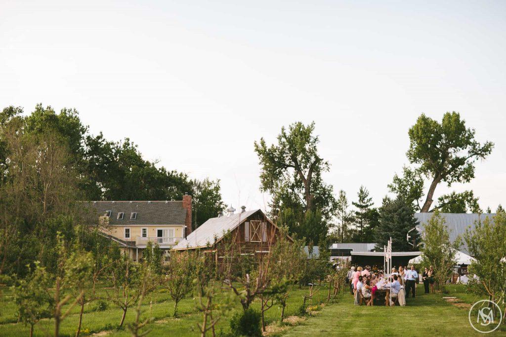 YA YA Farm and Orchard